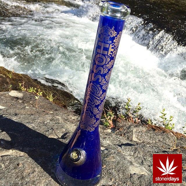 stoners marijuana pot weed stoned sexy stoner (139)