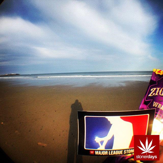 stoners marijuana pot weed stoned sexy stoner (15)
