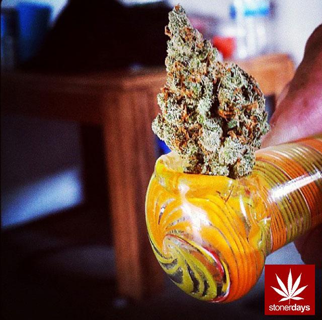 stoners marijuana pot weed stoned sexy stoner (152)