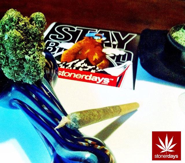 stoners marijuana pot weed stoned sexy stoner (177)