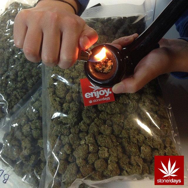 stoners marijuana pot weed stoned sexy stoner (184)