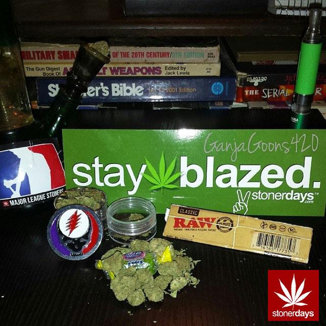 stoners marijuana pot weed stoned sexy stoner (19)