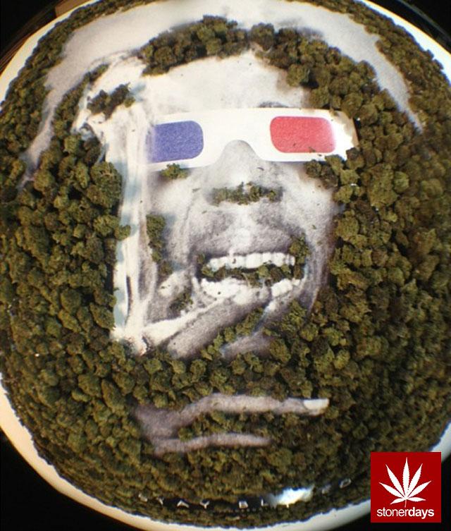 stoners marijuana pot weed stoned sexy stoner (198)