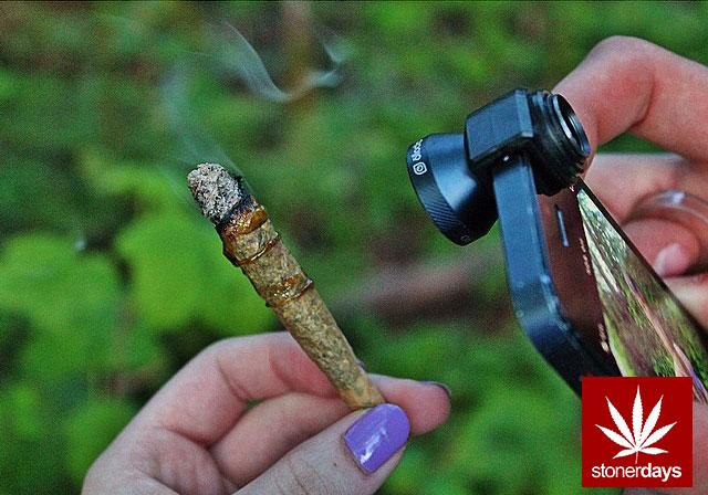 stoners marijuana pot weed stoned sexy stoner (201)