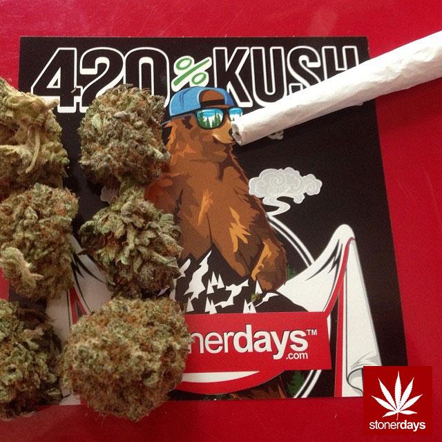 stoners marijuana pot weed stoned sexy stoner (207)
