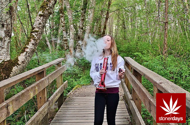 stoners marijuana pot weed stoned sexy stoner (215)