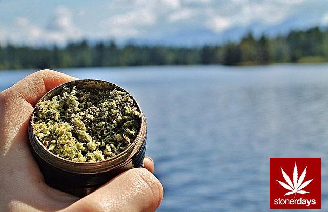 stoners marijuana pot weed stoned sexy stoner (228)