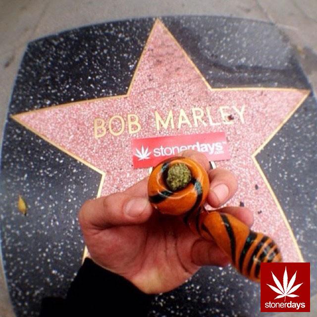 stoners marijuana pot weed stoned sexy stoner (248)