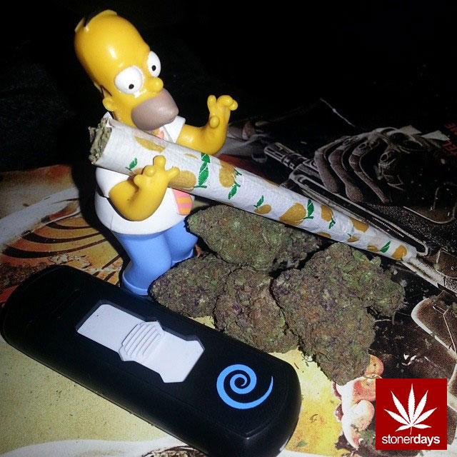 stoners marijuana pot weed stoned sexy stoner (251)
