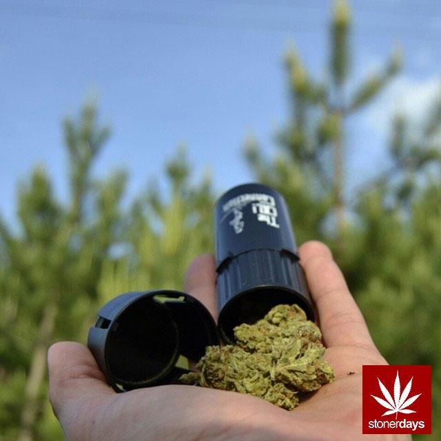 stoners marijuana pot weed stoned sexy stoner (268)
