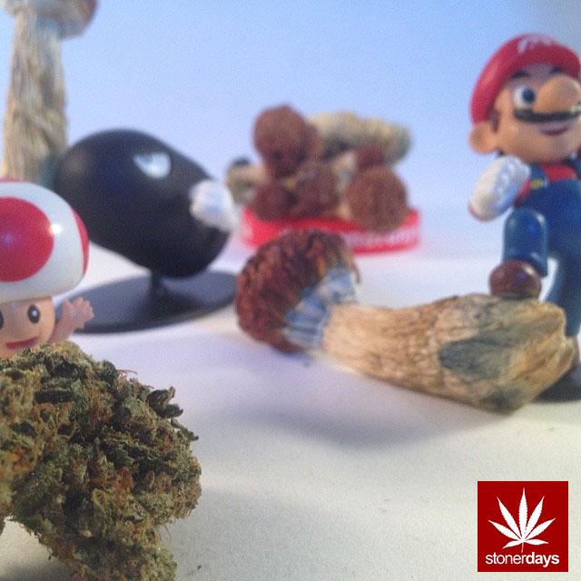 stoners marijuana pot weed stoned sexy stoner (270)