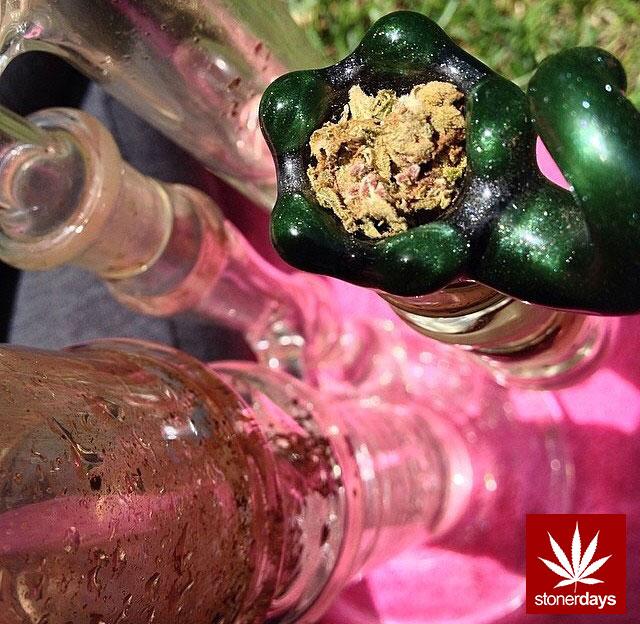 stoners marijuana pot weed stoned sexy stoner (276)