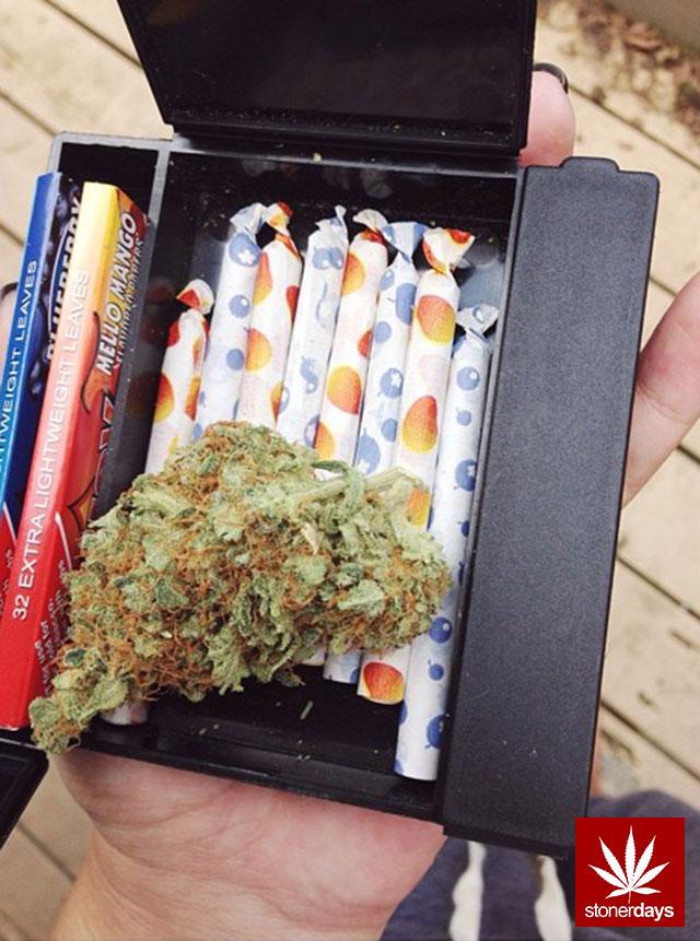 stoners marijuana pot weed stoned sexy stoner (281)