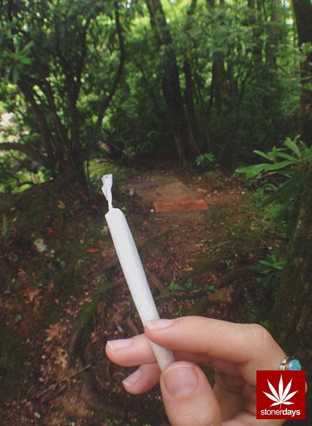stoners marijuana pot weed stoned sexy stoner (303)