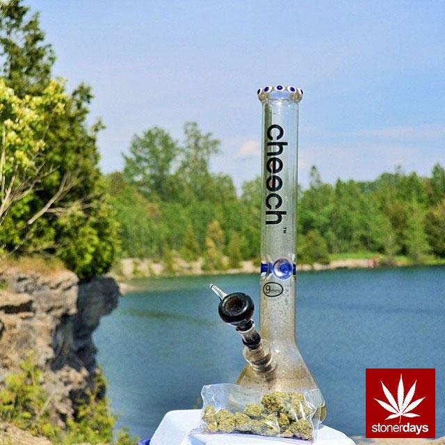 stoners marijuana pot weed stoned sexy stoner (312)
