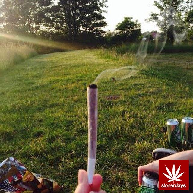 stoners marijuana pot weed stoned sexy stoner (316)