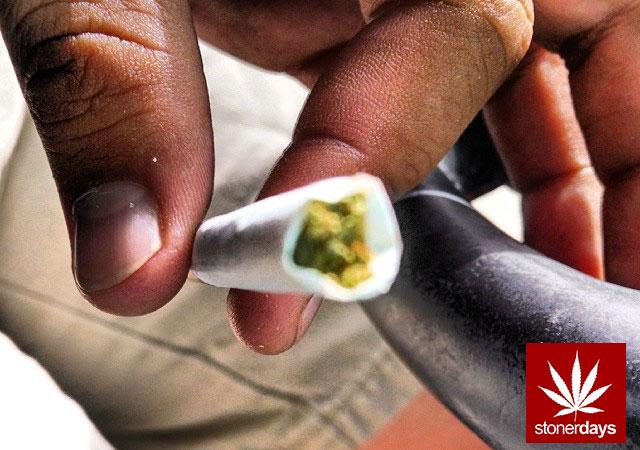 stoners marijuana pot weed stoned sexy stoner (321)