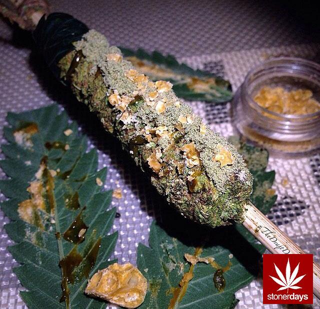 stoners marijuana pot weed stoned sexy stoner (330)