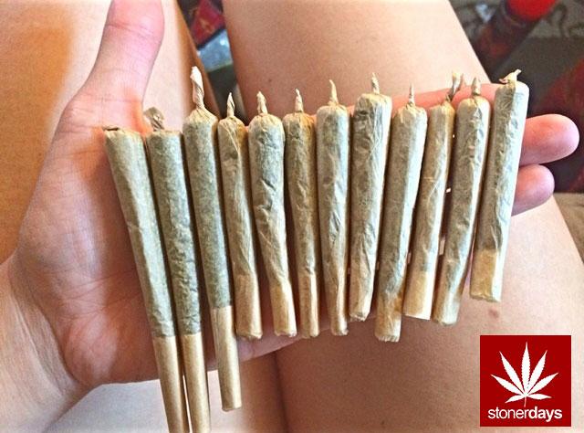 stoners marijuana pot weed stoned sexy stoner (333)