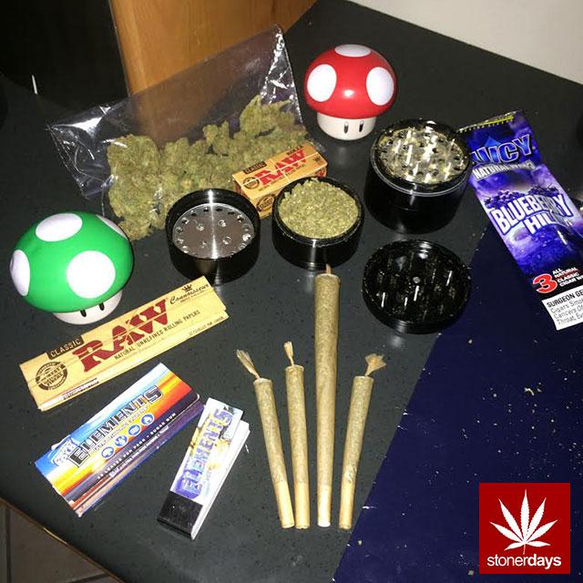 stoners marijuana pot weed stoned sexy stoner (343)