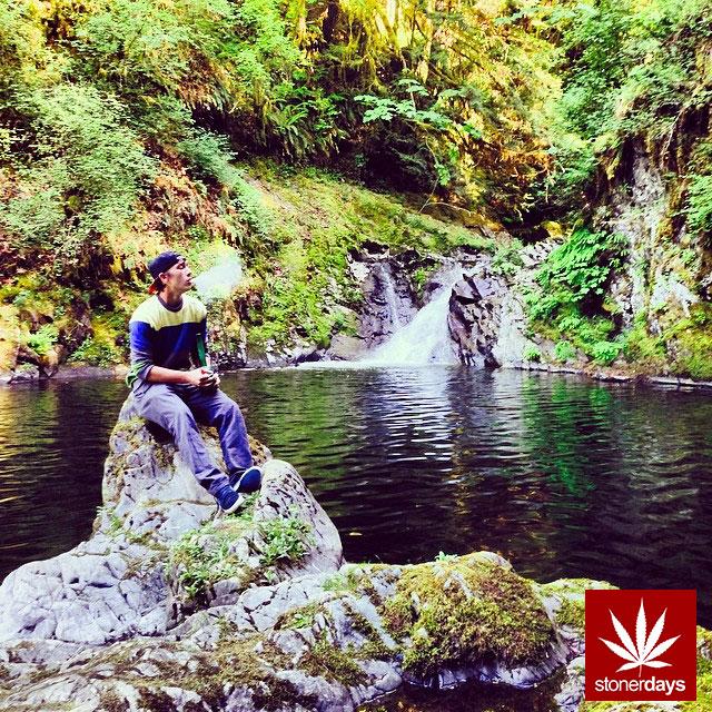 stoners marijuana pot weed stoned sexy stoner (385)