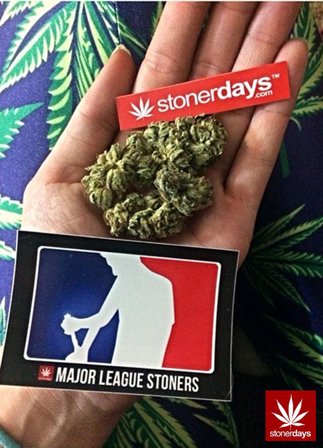 stoners marijuana pot weed stoned sexy stoner (42)