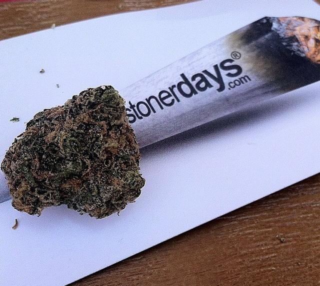 stoners marijuana pot weed stoned sexy stoner (61)
