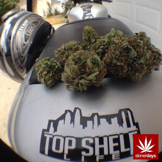 stoners marijuana pot weed stoned sexy stoner (77)