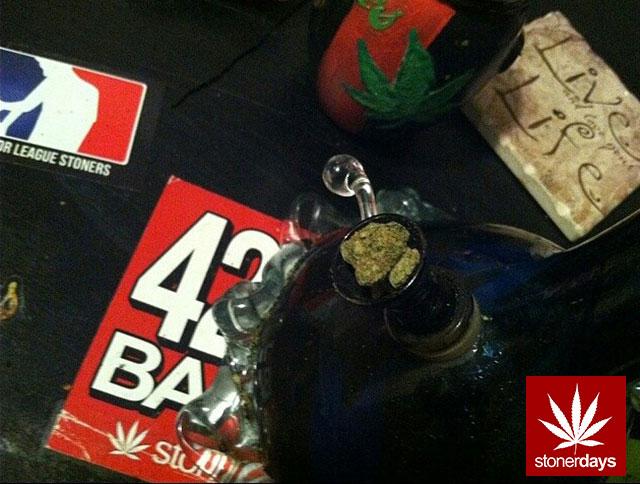 stoners marijuana pot weed stoned sexy stoner (78)