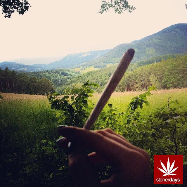 stoners marijuana pot weed stoned sexy stoner (80)