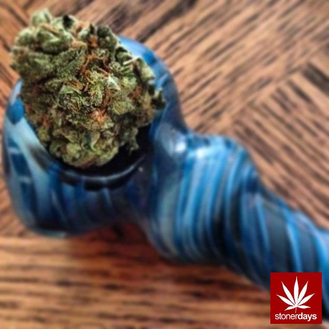 stoners marijuana pot weed stoned sexy stoner (82)