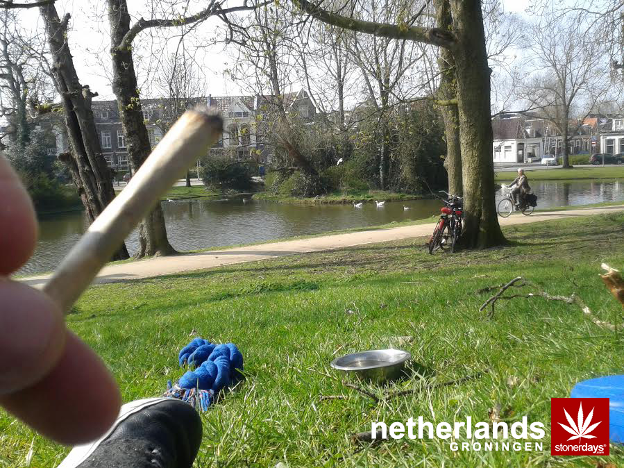 The-Netherlands-Groningen-marijuana-stonerdays