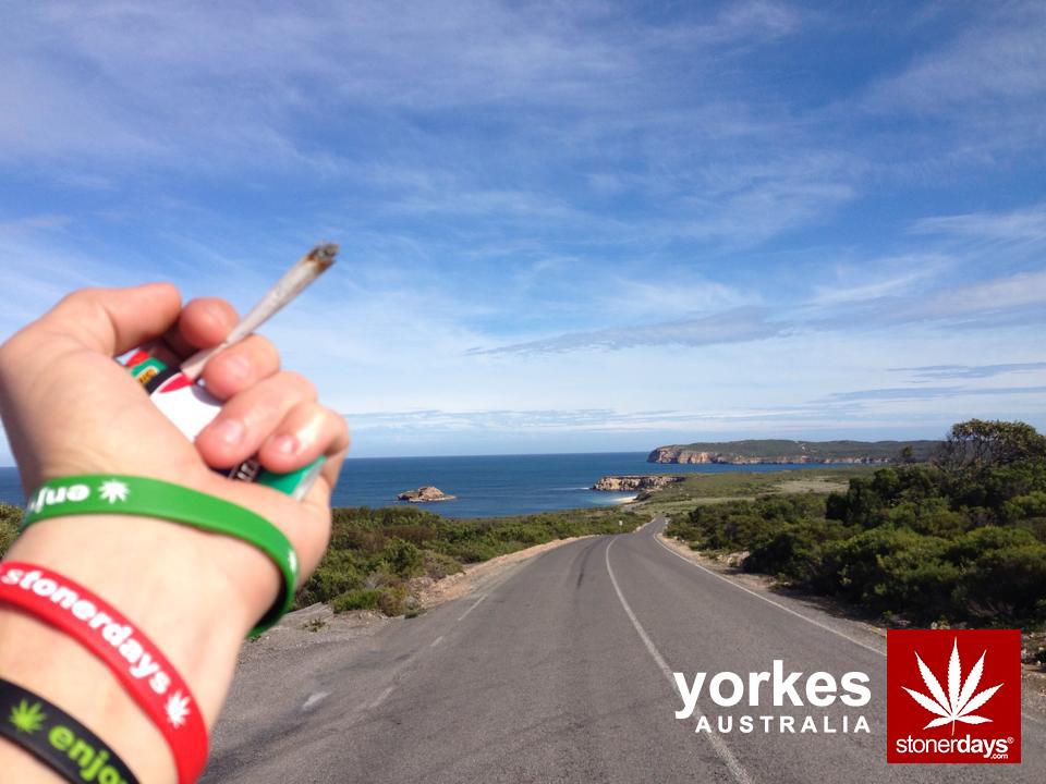 australia-yorkes-marijuana-stonerdays