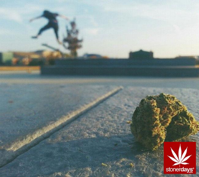 blunts-bongs-marijuana-pot-stonerdays (136)