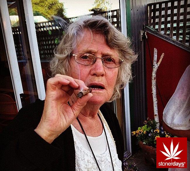 blunts-bongs-marijuana-pot-stonerdays (231)