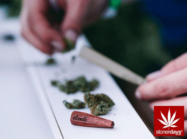 blunts-bongs-marijuana-pot-stonerdays (324)
