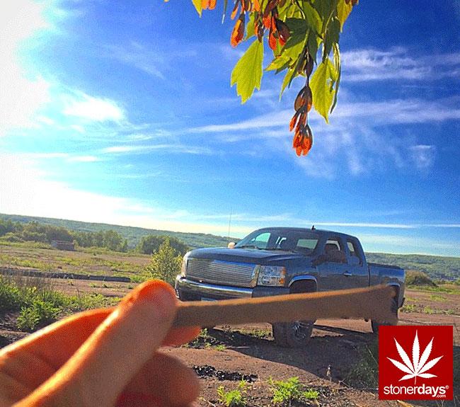 blunts-bongs-marijuana-pot-stonerdays (398)