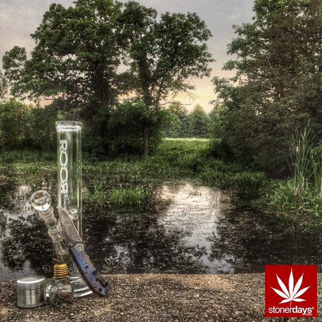 blunts-bongs-marijuana-pot-stonerdays (425)