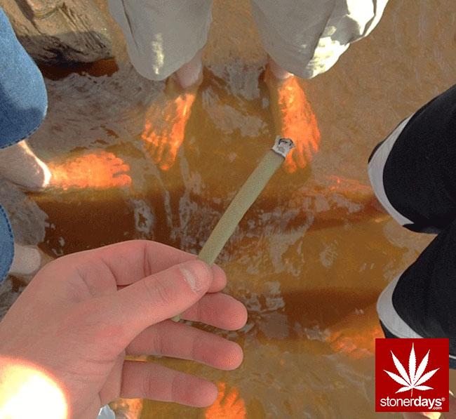 blunts-bongs-marijuana-pot-stonerdays (442)
