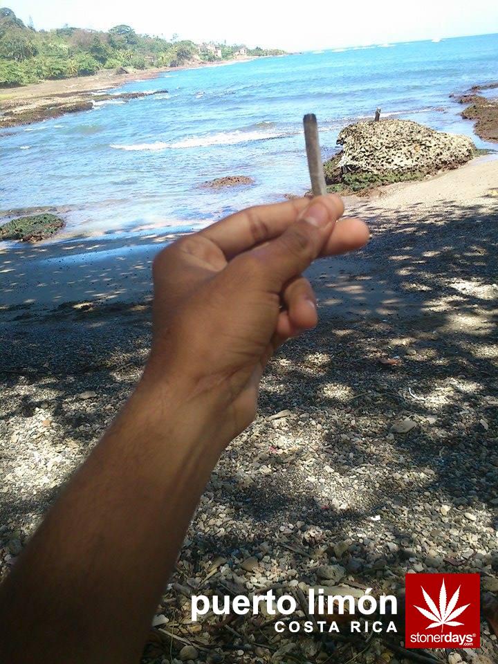 costa-rica-puerto-limon-marijuana