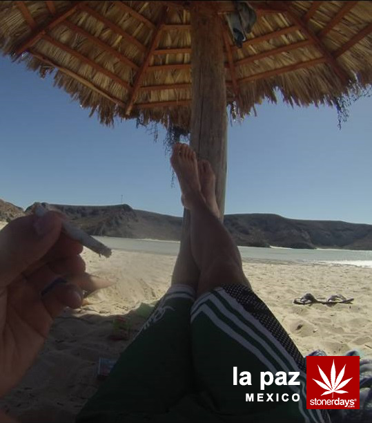 mexico-la-paz-la-balandra-beach-marijuana
