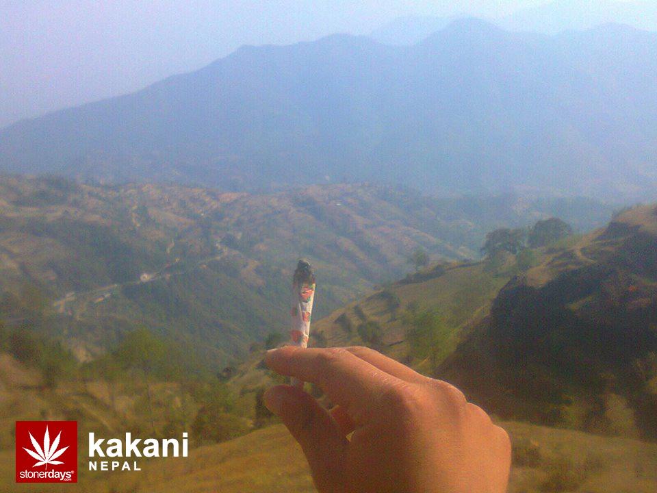 nepal-kakani-marijuana