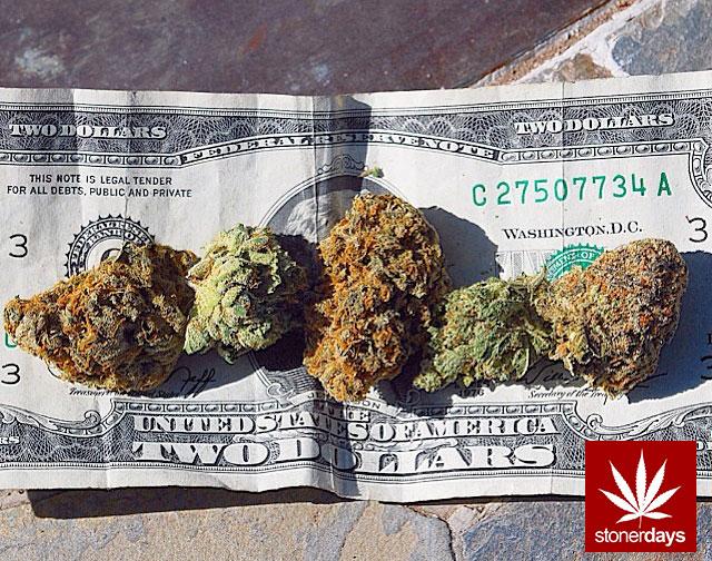 stonerdays-stayblazed-marijuana-pipes-joints-blunts-weed (100)
