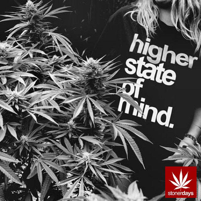 stonerdays-stayblazed-marijuana-pipes-joints-blunts-weed (2)