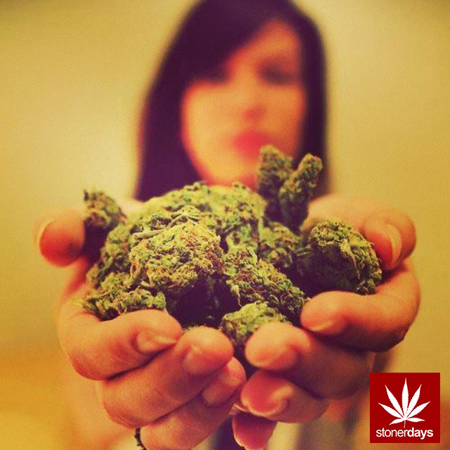 stonerdays-stayblazed-marijuana-pipes-joints-blunts-weed (207)