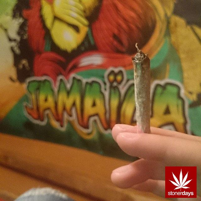 stonerdays-stayblazed-marijuana-pipes-joints-blunts-weed (34)