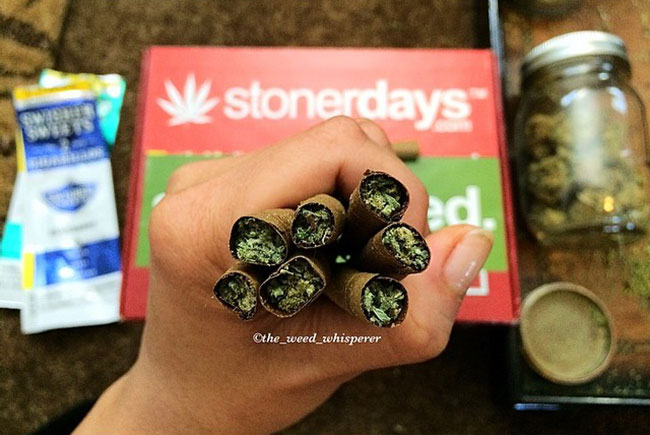 stonerdays-stayblazed-stoner-stoned (155)