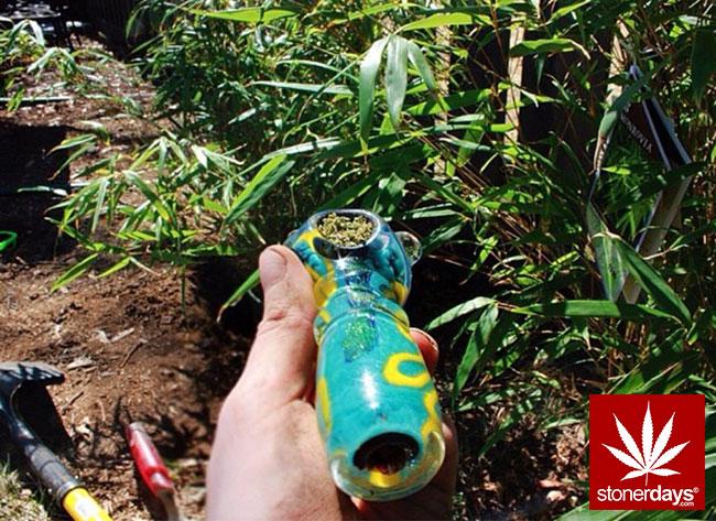 stonerdays-stayblazed-stoner-stoned (352)