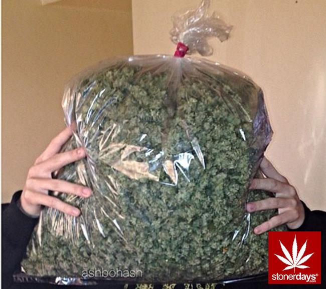 marijuana-stonerdays-pot-stoned-123