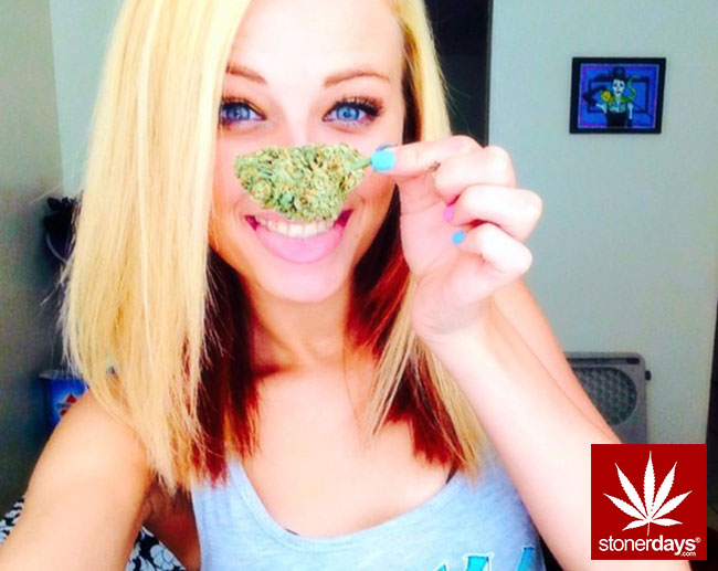 marijuana-stonerdays-pot-stoned-1234